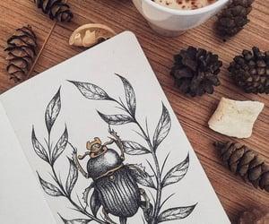art, bug, and drawing image