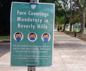 facemask and beverlyhills image
