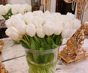 flowers, tulips, and home decor image