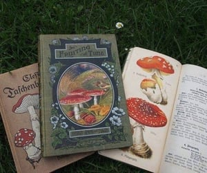 book, mushroom, and cottagecore image