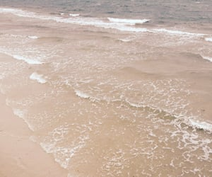 beach, beige, and landscape image