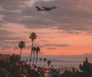 travel, plane, and summer image