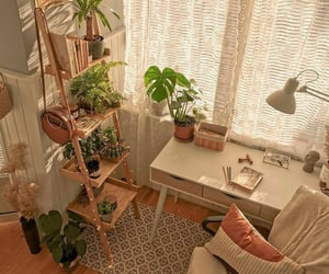 cactus, table, and cozy image