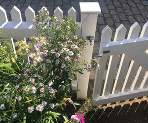 fence, flowers, and home image