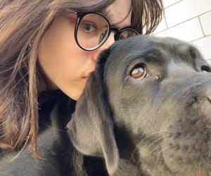 animal, brunette, and girl image