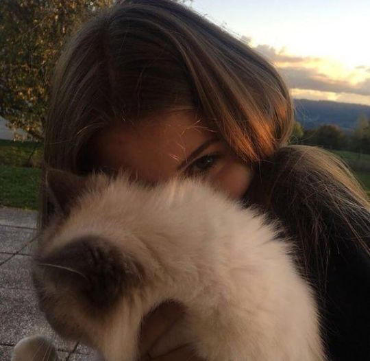 cat, pretty, and girl image