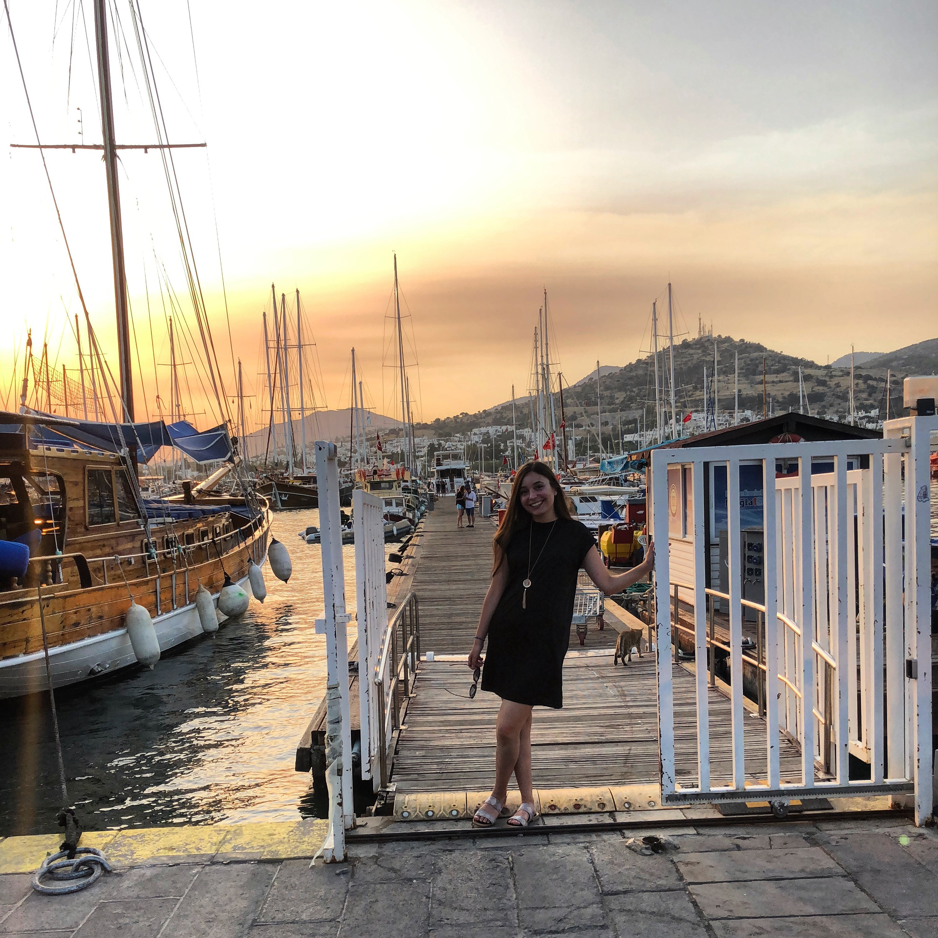article, turkce, and Turkish image