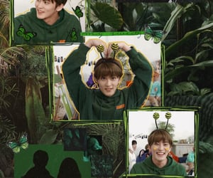 aesthetic, background, and green image