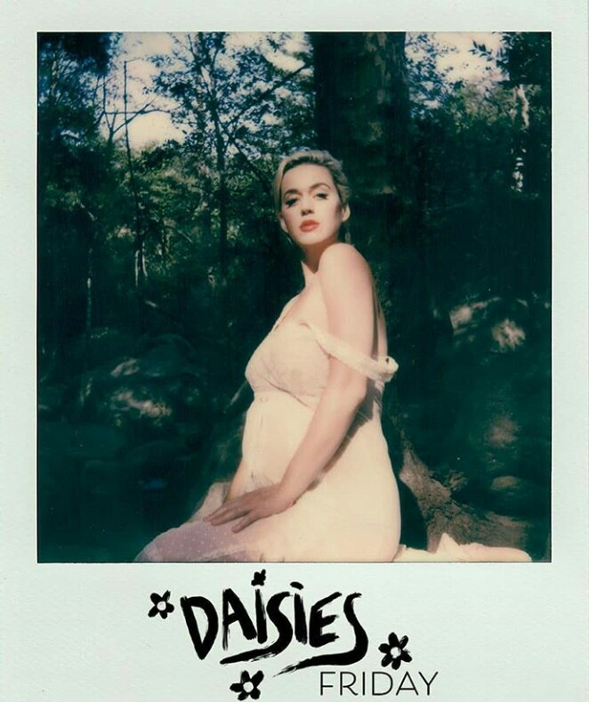 awesome, daisies, and katy perry image