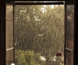 rain and aesthetic image