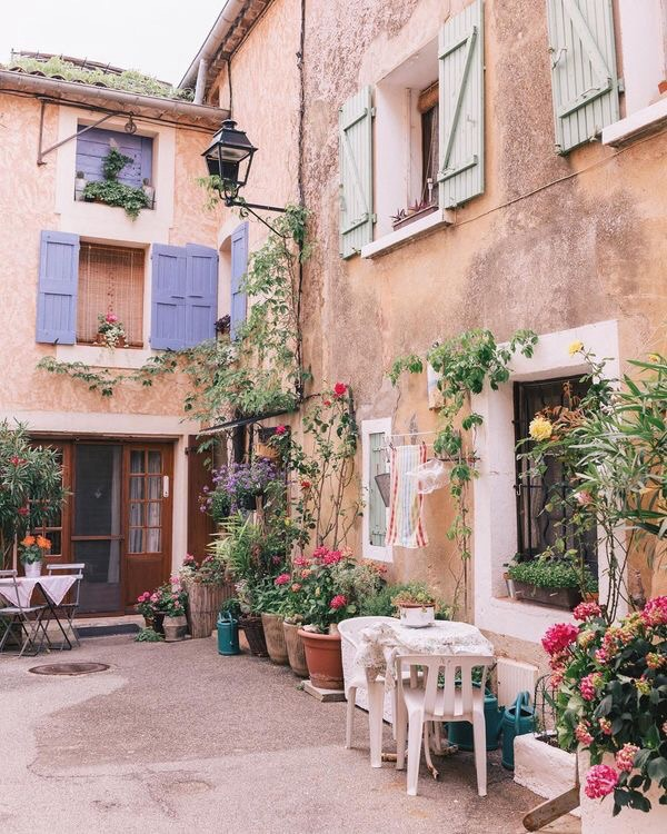 cozy, flowers, and home image