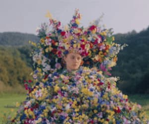 aesthetic, midsommar, and atmosphere image