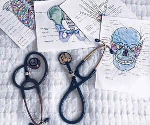 study, medicine, and doctor image