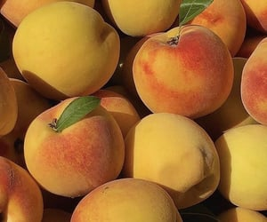 peach and fruit image