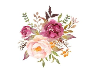 flower, stories, and Logo image