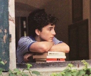 aesthetic, timothee chalamet, and call me by your name image
