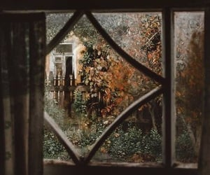 window, autumn, and fall image