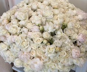 flowers, luxury, and kylie jenner image