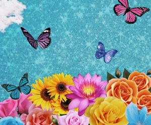 aesthetic, bright, and butterflies image