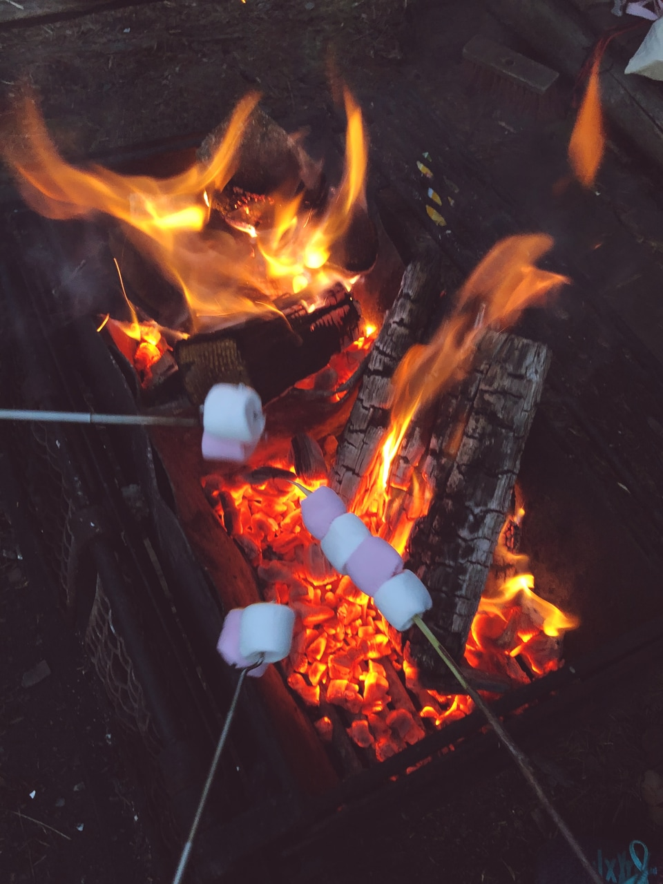 campfire, camping, and fire image
