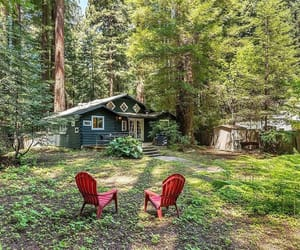 architecture, forest, and cabin image