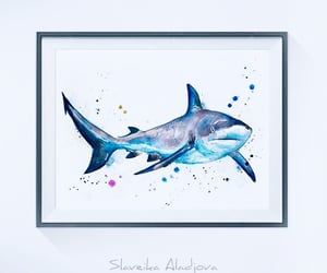 art, shark, and water colour image