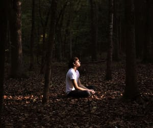 inspiracion, bosque, and consejos image
