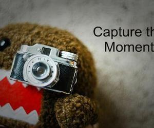 camera, canon, and photograph image