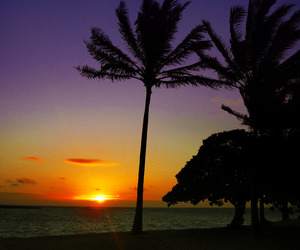 beach, color, and hawaii image