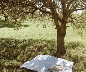 nature, picnic, and summer image