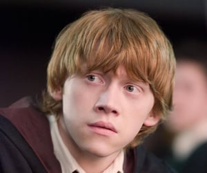 ron weasley, harry potter, and rupert grint image
