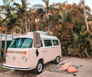 inspiration, palm trees, and photography image