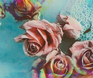 flowers and twitter headers image