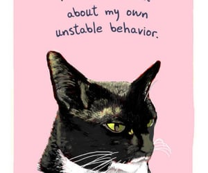 cat, pink, and quote image