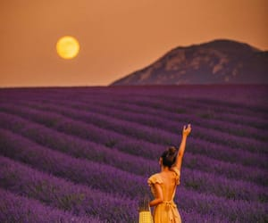 beautiful, scenery, and beauty image
