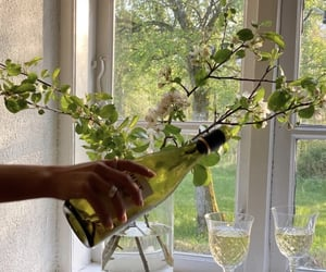 green, wine, and flowers image