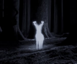 expecto patronum, hermione granger, and ravenclaw image