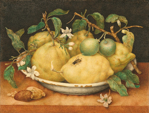 art, oil, and plants image