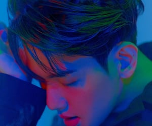 delight, exo, and mini album image