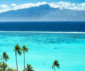 Aloha, beach, and explore image