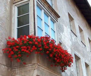 balcony, decoration, and Dream image