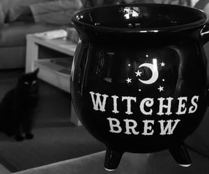 black cat, cauldron, and cozy image
