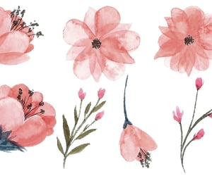 doodles, pink flowers, and art line image