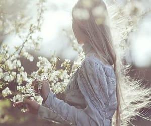beautiful, light, and natural image