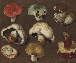 mushroom, brown, and painting image