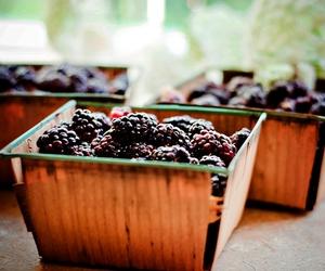basket and blackberries image