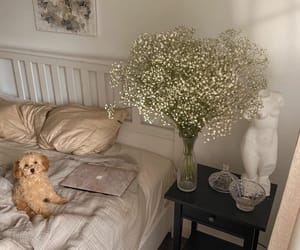 bedroom, dog, and flowers image