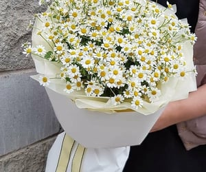 beauty, bouquet, and chic image