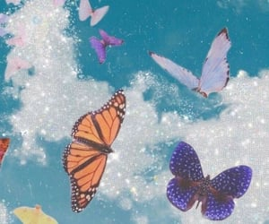 butterfly, aesthetic, and wallpaper image