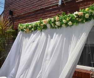 flor, fondo, and casamiento image